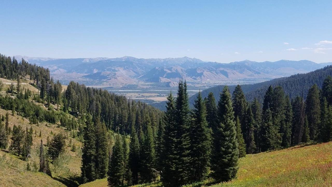 Let Targhee National Forest Inspire Your Next Adventure